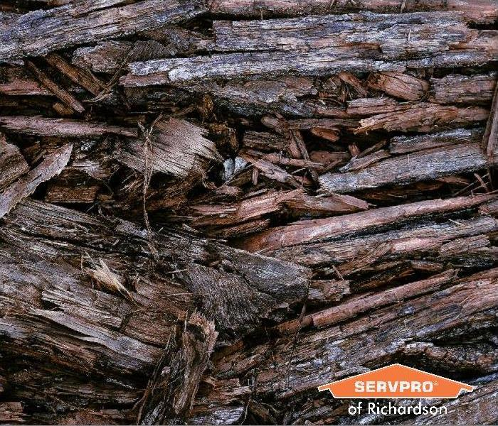 How Long Does it Take for Wood to Rot from Water in ...