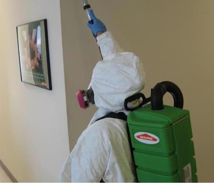 Mold Remediation FAQ Image