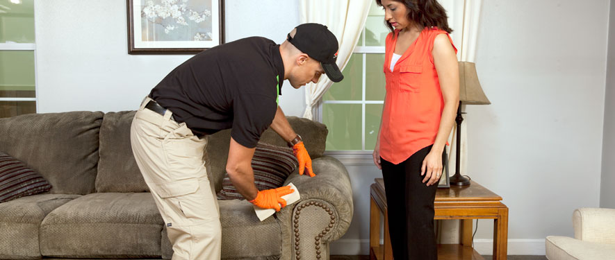 Richardson, TX carpet upholstery cleaning